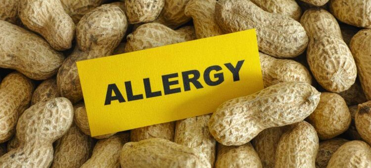 Peanut Allergy Treatment On The Horizon; FDA Approval Needed